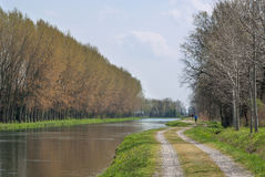 Manica di acqua per irrigazione agricola Fotografia Stock Libera da Diritti