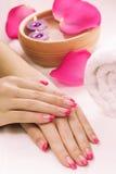 Manicura con los pétalos color de rosa y la toalla fragantes. Spa Foto de archivo libre de regalías