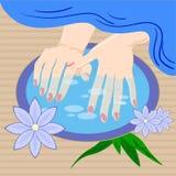Manicura, cuidado de la mano La mujer s manicured las manos con el cuenco y las flores, ejemplo del vector Fotos de archivo libres de regalías