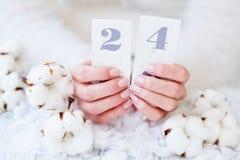Manicura francesa y flor hermosas del algodón Fotos de archivo