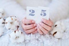 Manicura francesa y flor hermosas del algodón fotografía de archivo libre de regalías