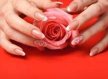 Manicura. Manos femeninas en fondo rojo Foto de archivo libre de regalías