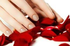 Manicura perfecta Manos de la mujer con los clavos beige naturales manicured Imagenes de archivo