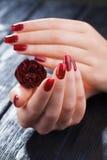 Manicura roja con la flor color de rosa Spa Fotos de archivo