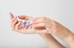 manicure шариков Стоковые Фото