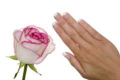 Manicure Imagem de Stock