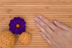 Manicure Stock Photography