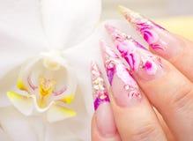 Manicure royaltyfri foto