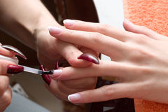 Manicure Royalty Free Stock Photo