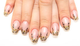 Manicure. Women's hands with beautiful drawings on the nails Royalty Free Stock Photography