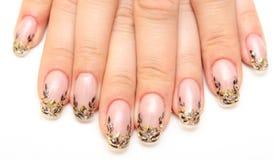 manicure стоковая фотография rf