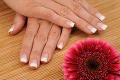 Manicure Royalty Free Stock Photo