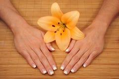 manicure fotografia stock