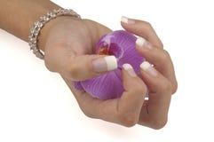 Manicure Foto de Stock