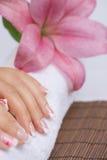 manicure Arkivbilder