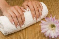 Manicure Imagens de Stock Royalty Free