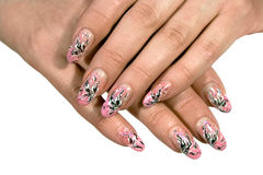 Manicure. Female hands with manicure on a white background Stock Images