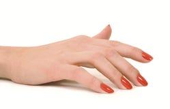 Free Manicure Stock Photos - 8022653