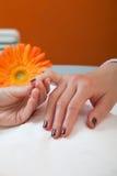 Manicure стоковые фотографии rf