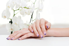 Manicure And Orchid Royalty Free Stock Images