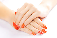 Manicure. applying red nail polish. isolated Royalty Free Stock Images