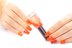 Manicure. applying red nail polish. isolated Stock Photos