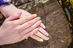 Manicure on a background of cut wood Stock Image