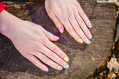 Manicure on a background of cut wood Stock Images