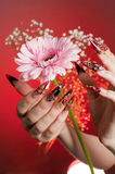 Manicure of beautiful hands with a flower Stock Photography