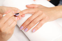 Manicure - Beautiful manicured woman's nails with violet nail po Royalty Free Stock Photos