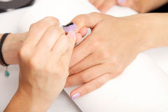 Manicure - Beautiful manicured woman's nails with violet nail po Royalty Free Stock Images