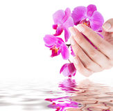 Manicure and beauty background Royalty Free Stock Images