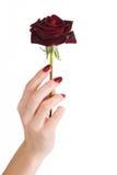 manicure czerwień wzrastał Zdjęcie Stock