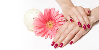 Manicure, delicate flower and candle Royalty Free Stock Photography