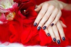 Manicure e fiori scuri su rosso Immagini Stock