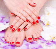 Manicure e pedicure fotografia stock