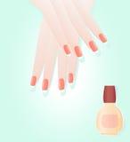 Manicure e smalto illustrazione vettoriale