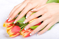 Manicure e tulipani Fotografia Stock
