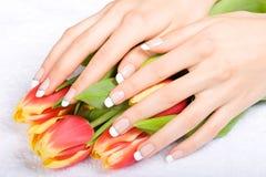 Manicure e tulips Fotografia de Stock