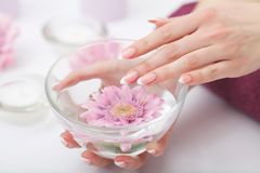 Manicure en Hands Spa De mooie vrouw overhandigt close-up Royalty-vrije Stock Afbeeldingen