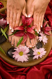 Manicure en pedicure royalty-vrije stock afbeelding