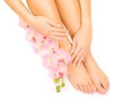 Manicure en pedicure met een roze orchideebloem Stock Fotografie