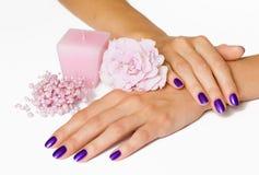 Manicure, fleur rose, bougie, programmes Image libre de droits