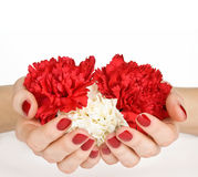 Manicure and flower heart Stock Images