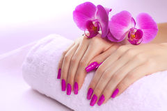 Beautyful manicure with fragrant orchid and towel. Stock Photos