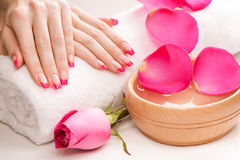Manicure with fragrant rose petals and towel. Spa Stock Images