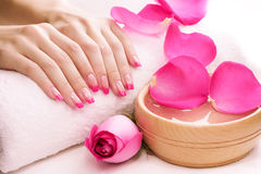 Manicure with fragrant rose petals and towel. Spa Royalty Free Stock Images