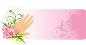 Manicure francês e orquídeas bonitas. Cartão ilustração do vetor