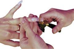 Manicure francese Fotografie Stock Libere da Diritti