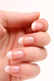 Manicure francese immagine stock